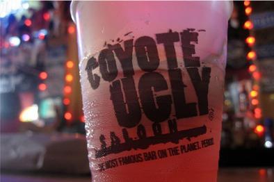 coyote_ugly
