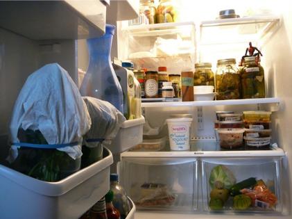 fridge_contents