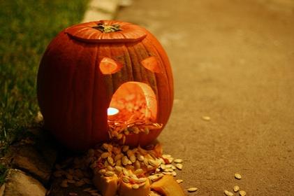 pumpkin_puke_421