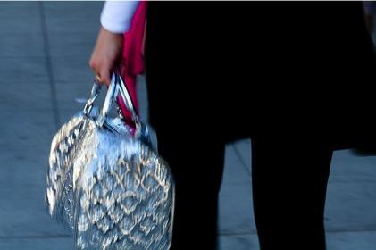 handbug_purse